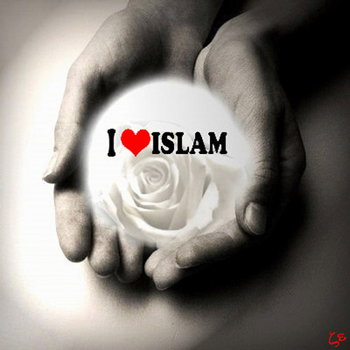 http://pintutaubat.files.wordpress.com/2009/12/love-islam.jpg